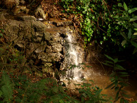 Tiny Stream Waterfall